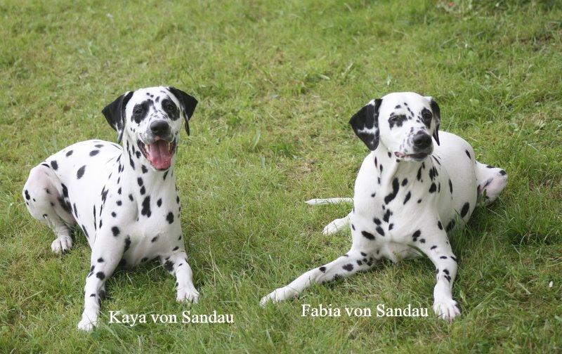 Kaya und Fabia